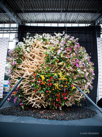 World-Flower-Competition338_450